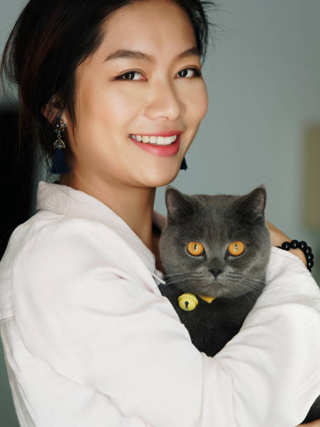 Portrait of beautiful Chinese young girl hug her cute British Shorthair Cat who has amazing orange eyes at home and smile at camera in sunny afternoon, happy pets owner lifestyle. stock photo