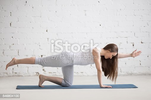 istock Portrait of beautiful woman doing bird-dog pose 546804100