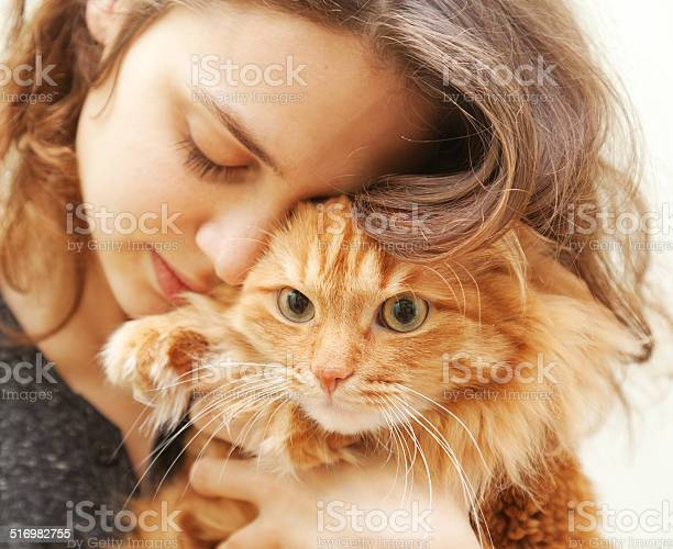 Portrait of beautiful young woman with a cat picture id516982755?b=1&k=6&m=516982755&s=612x612&h=letz5oc 9xvp4nlrsb4yppogfuq12gi7rjx1afipbgc=