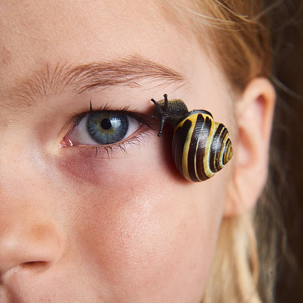 Portrait of blond child girl with snail on her face picture id614224742?b=1&k=6&m=614224742&s=612x612&w=0&h=8zbp1yerwdumykq5i3xwoteyb5lw6vcxhvuxaw6uugq=