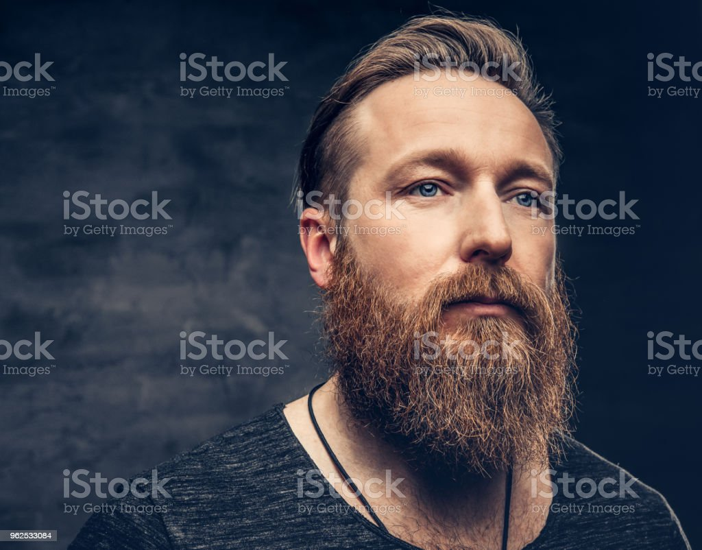 Portrait of blue eyed redhead full throttle bearded male over grey background. - Royalty-free Beard Stock Photo