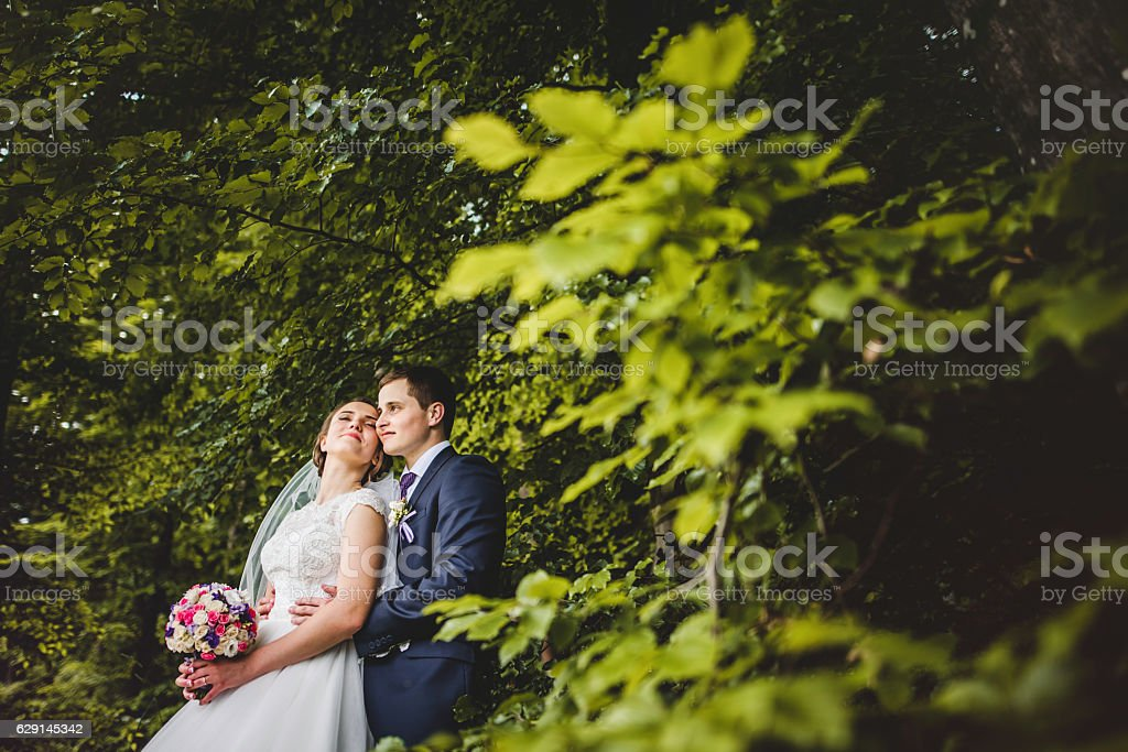 Portrait of bride and groom on the forest stock photo