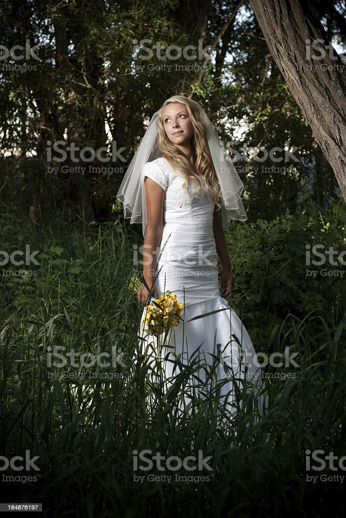 Portrait of Bride Holding Bouquet Outdoors royalty-free stock photo