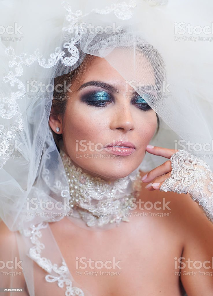 Portrait of bride with a veil and makeup royalty-free stock photo
