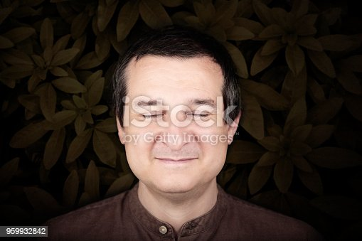 istock portrait of calm serene man with leaves 959932842