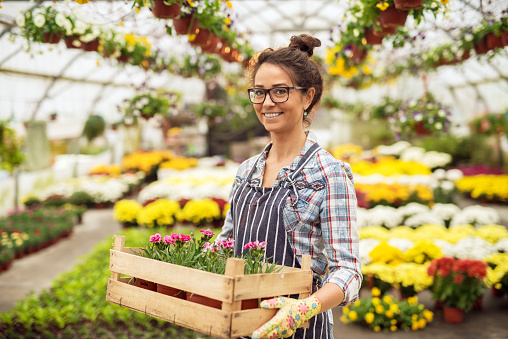 Portrait of charming beautiful happy middle-aged florist woman standing in the large greenhouse full of flowers and looking at the camera while holding the wooden box with few flowerpots and flowers.