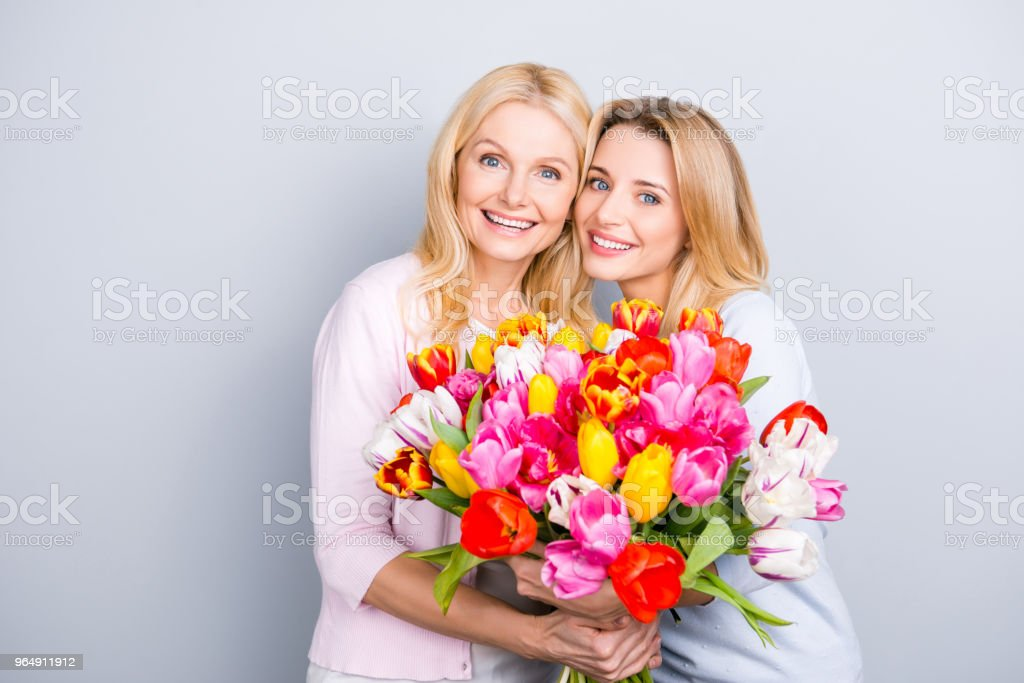 Portrait of charming pretty attractive mother and daughter having big bouquet of colorful aromatic tulips looking at camera bonding isolated on grey background royalty-free stock photo