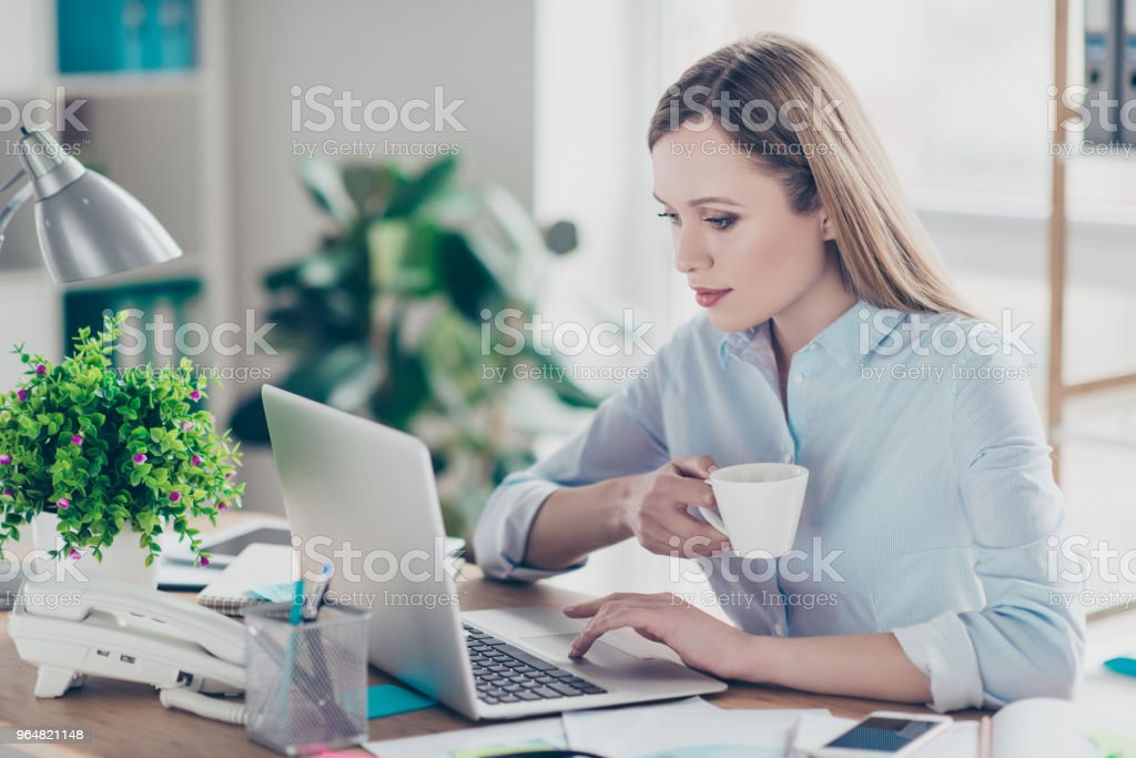 Portrait of charming, pretty, stylish woman expertising, analyzing on computer holding mug of coffee in arm looking at screen of laptop sitting in work place, station royalty-free stock photo