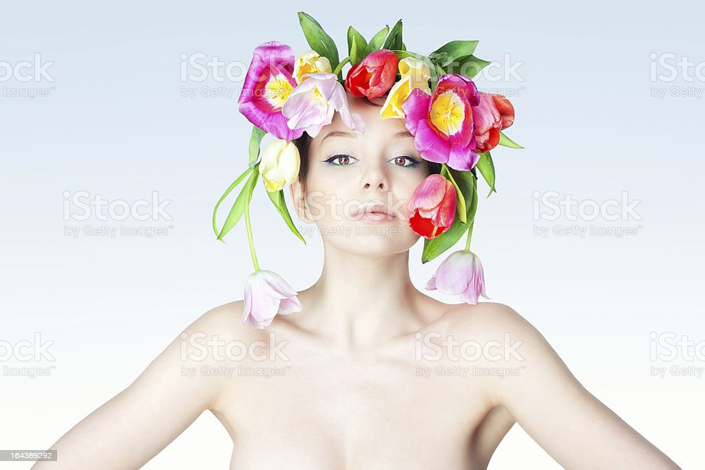 Portrait of Dutch flower. royalty-free stock photo
