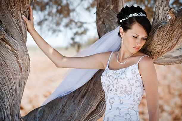 Portrait of elegant bride stock photo