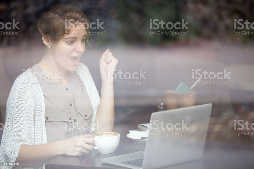 Portrait of euphoric woman looking at her laptop stock photo