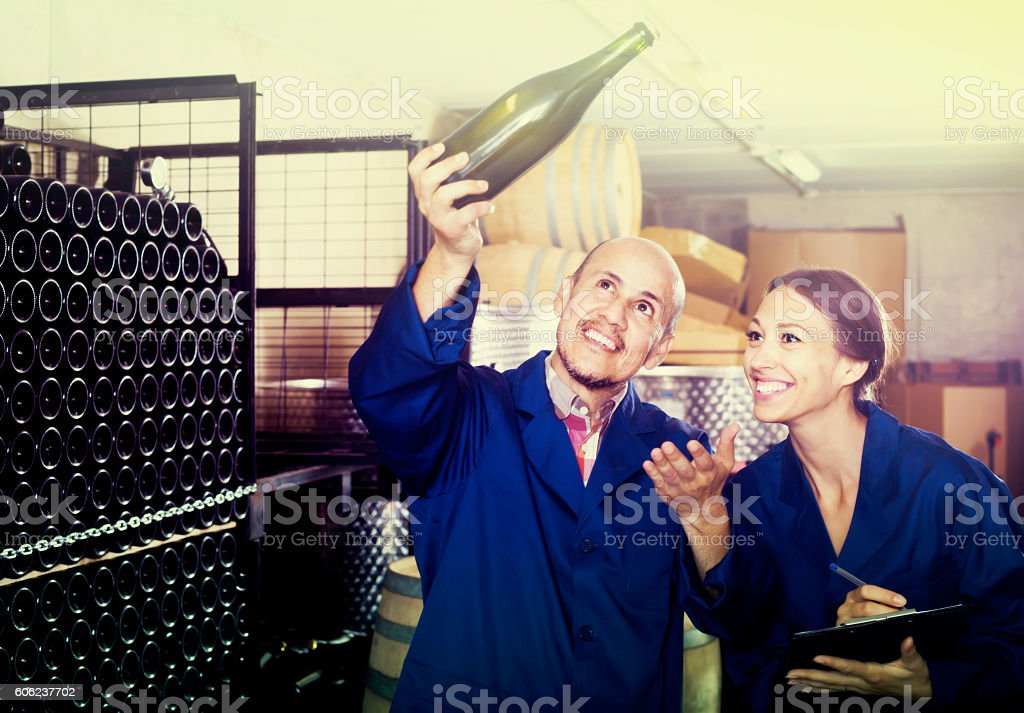 portrait of expert woman standing with clipboard and talking to stock photo