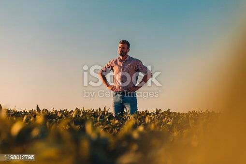 Portrait of farmer standing in soybean field at sunset.