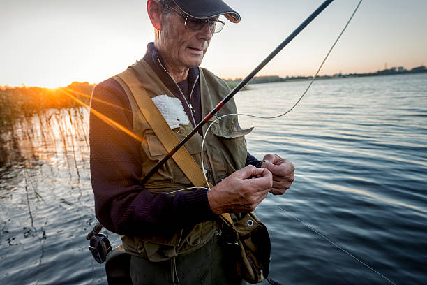 Portrait of Fisherman Tying a Fly on Stege Nor Denmark Close up candid portrait of a fly fisherman, 64 years old, tying a fly onto his line. Photographed against a setting sun on Stege Nor on the island of Møn in Denmark. Colour, horizontal format with some flare coming into the lens from the setting sun, enhancing the  mood of the picture. fisherman stock pictures, royalty-free photos & images