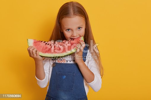 Portrait of girl with piece of watermelon, smiles and eating tasty watermelon, charming kid wears white shirt and jeans overalls, posing isolated over yellow studio background. Childhood concept.