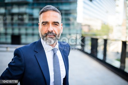 Portrait of handsome mature businessman looking at the camera