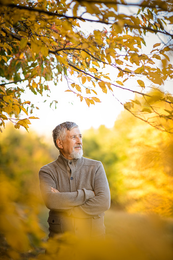 Portrait of handsome senior man in the autumn outdoors. Active senioor enjoying his retirement in the  nature