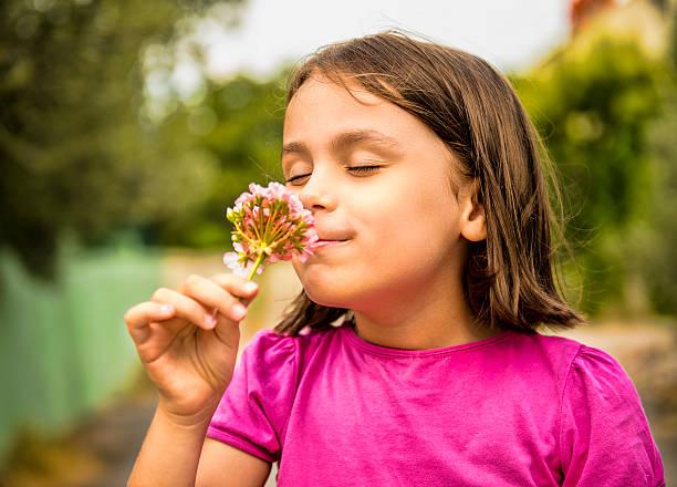 Portrait of happy little girl smelling flower stock photo