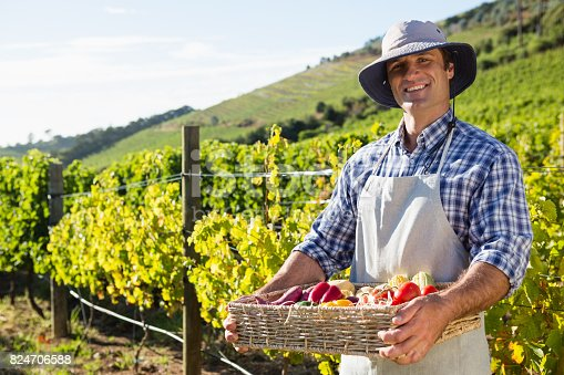 istock Portrait of happy man holding a basket of fresh vegetables 824706588