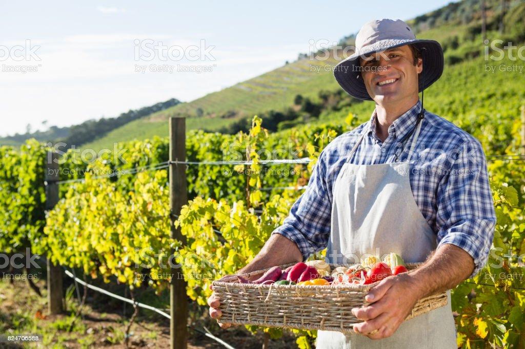 Retrato de feliz hombre sosteniendo una cesta de verduras - foto de stock