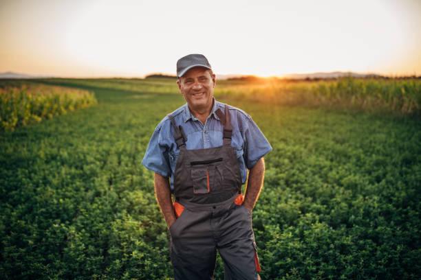 porträt des glücklichen älteren landwirts - bauernberuf stock-fotos und bilder