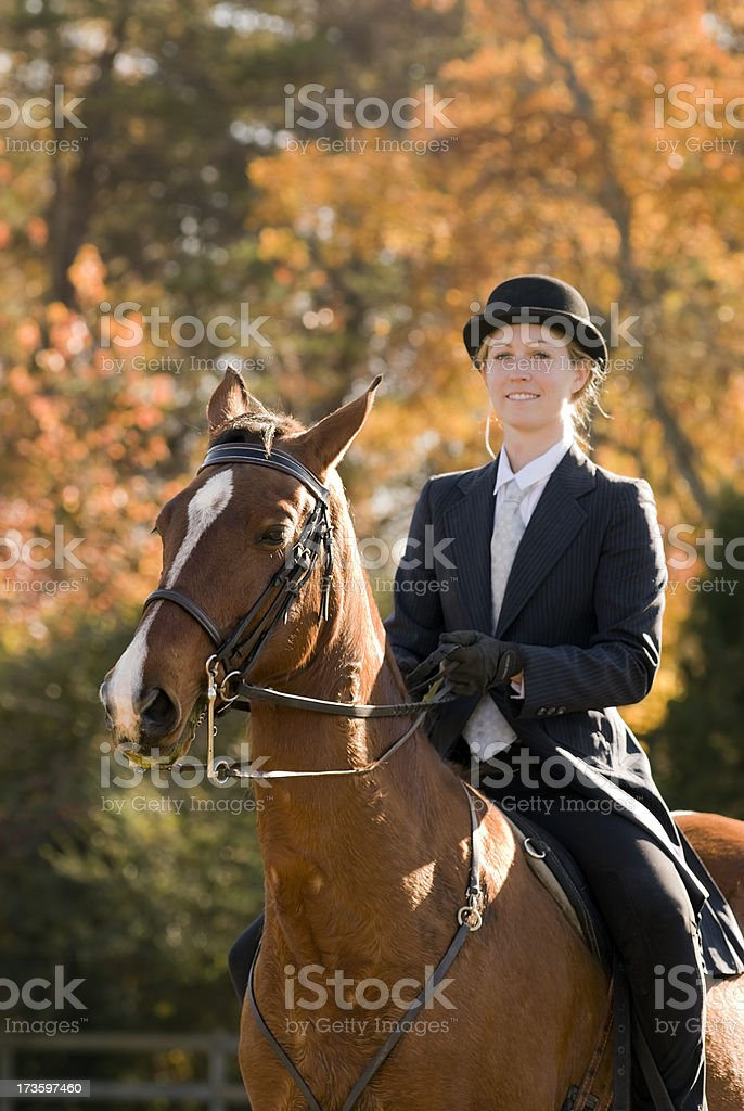 Portrait of Horse and Rider in Saddle Seat competition Outfit royalty-free stock photo