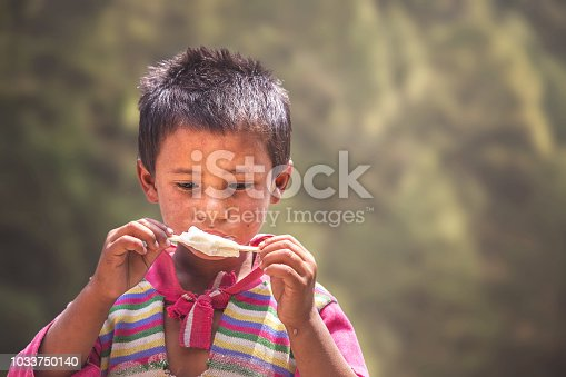 941788480 istock photo Portrait of Indian poor little Boy with Ice Cream 1033750140