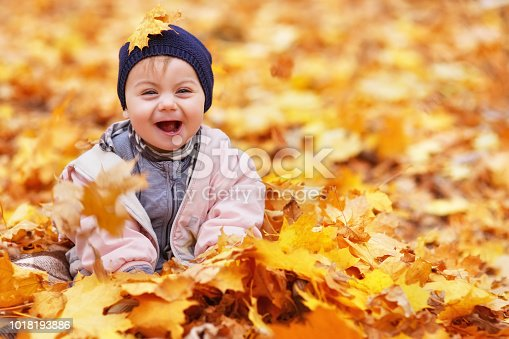 istock portrait of little baby girl in the autumn park 1018193886