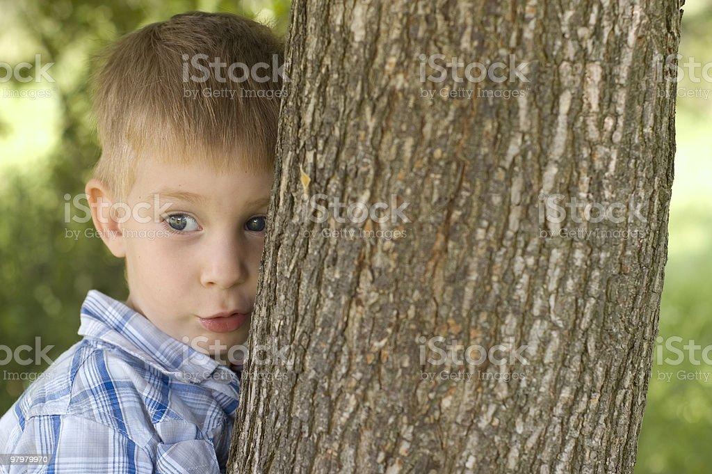 portrait of little boy near a tree royalty-free stock photo
