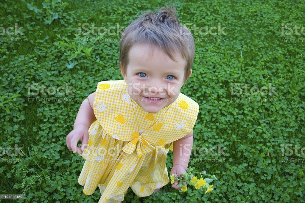 Portrait of little girl on grass background royalty-free stock photo