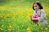 Portrait of little girl picking flowers in a park