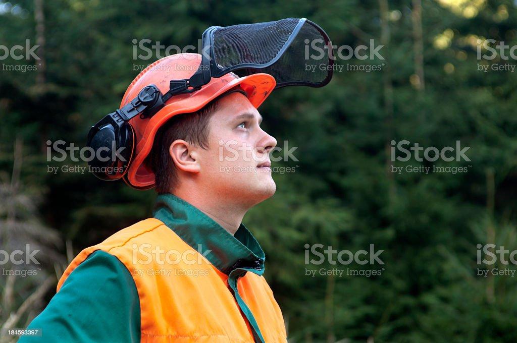 Portrait of Lumberjack stock photo