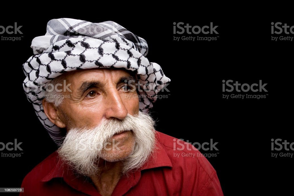 Portrait of Man with Mustache royalty-free stock photo
