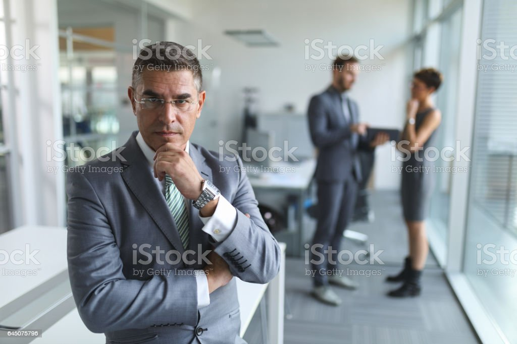 Portrait of mature businessman in the office. stock photo