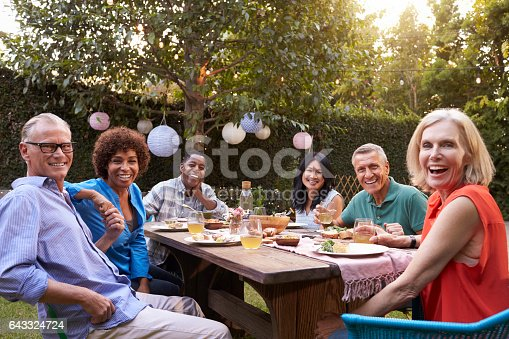 643325030 istock photo Portrait Of Mature Friends Enjoying Outdoor Meal In Backyard 643324724