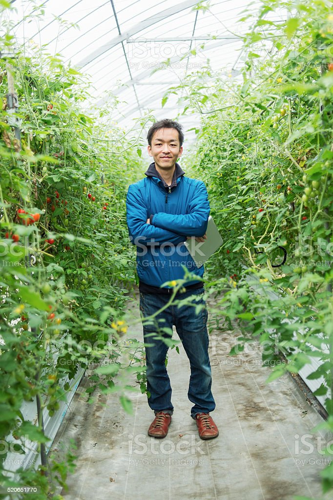 Portrait of mid adult farmer in greenhouse stock photo