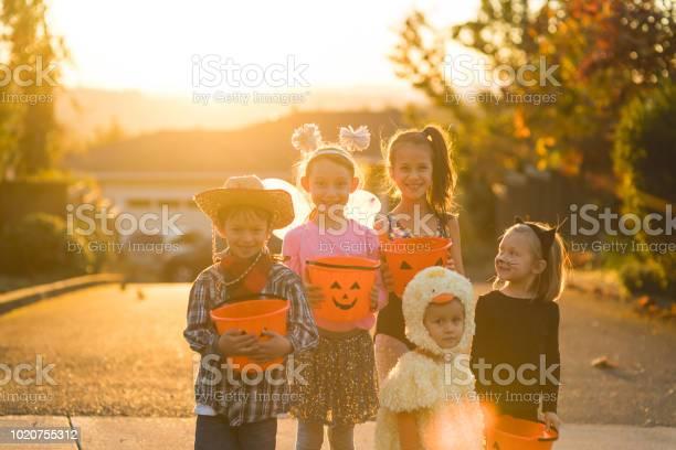 Portrait of multiethnic group of kids trick or treating picture id1020755312?b=1&k=6&m=1020755312&s=612x612&h=mu8h01mmrph6irfvtzknwqczms evjdapp40tuzzy 8=