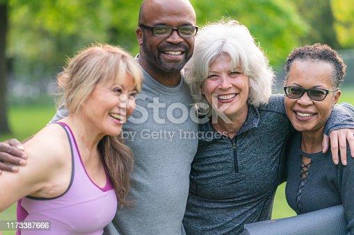 istock Portrait of multi-ethnic group of seniors attending outdoor fitness class 1173387666
