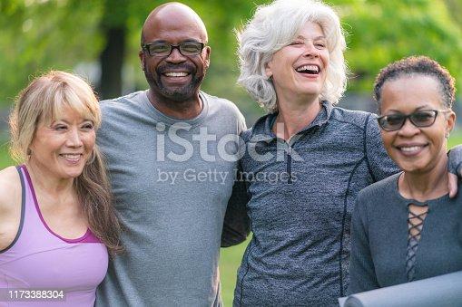 istock Portrait of multi-ethnic group of seniors attending outdoor fitness class 1173388304