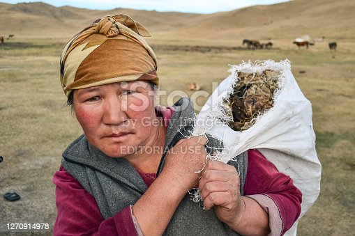 istock Portrait of nomadic woman transporting a bag of manure from her cows to make fire in her yurt 1270914978
