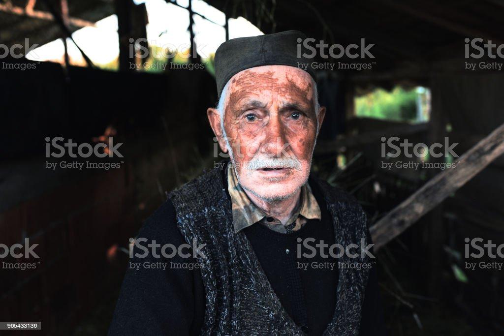 노인, 마차 말 작업자의 초상화 - 로열티 프리 80-89세 스톡 사진