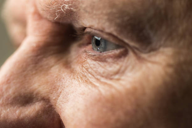 Portrait of over 80 year old man stock photo
