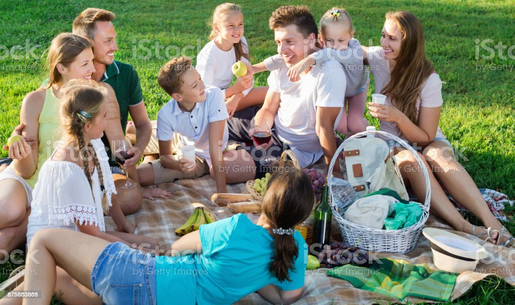 Portrait of  parents with children on picnic in nature at summer stock photo