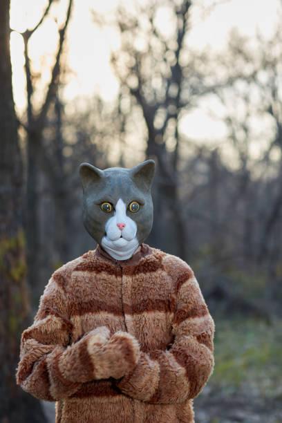 porträt des trägers katze kostüm mit maske - cartoon kostüme stock-fotos und bilder