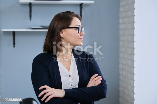 949435100 istock photo Portrait of positive confident mature woman with folded arms 1205536938