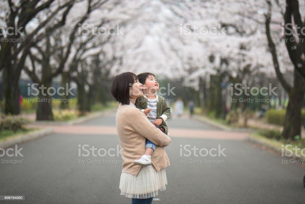 妊娠中の母親と桜の木が子の肖像画 ストックフォト