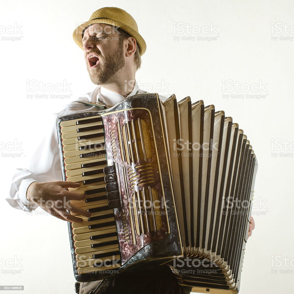 Portrait of professional musician with accordion – Foto