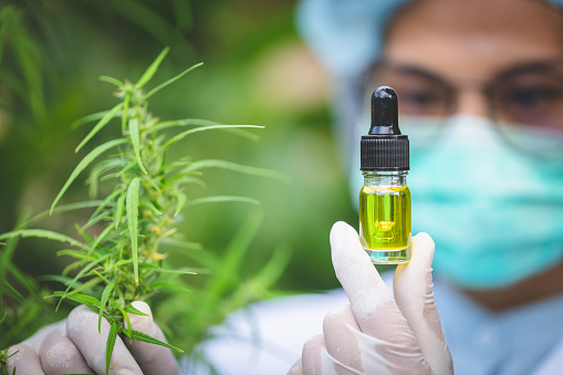 1177762728 istock photo Portrait of scientist with mask, glasses and gloves researching and examining hemp oil in a greenhouse. Concept of herbal alternative medicine, cbd oil, pharmaceptical industry 1178459722