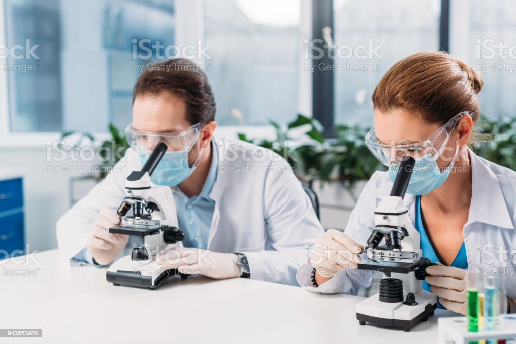 portrait of scientists in medical masks and gloves looking through microscopes on regents in lab stock photo