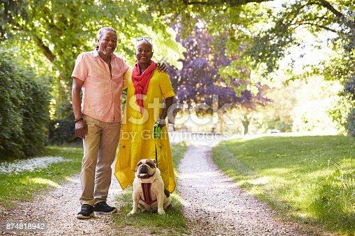 874818944 istock photo Portrait Of Senior Couple Walking Pet Bulldog In Countryside 874818942